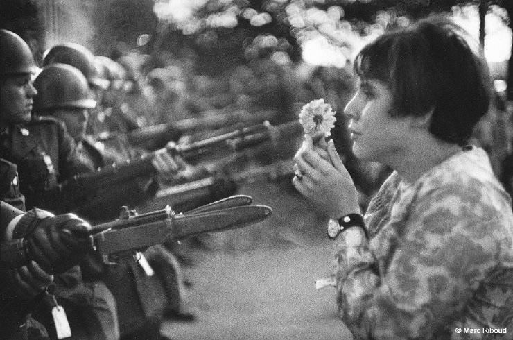 Flowers vs. Rifles