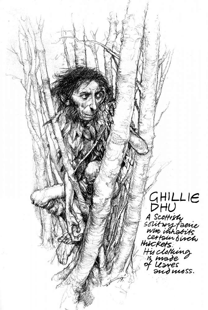 Ghillie Dhu, 'The Dark Lad,' by Brian Froud.