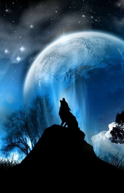 Holwing Wolf Moon