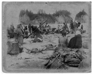 Quileute beach salmon catch c 1905