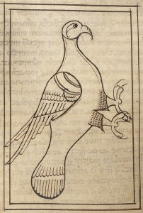 Early 12th cent Irish MS Eagle crop