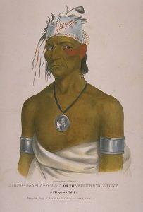 Chippewa Chief Figured Stone